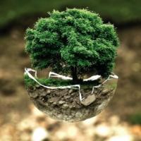 [ Les webinars de Natexpo ] Rendez-vous le 27 avril pour découvrir les enjeux de l'économie circulaire
