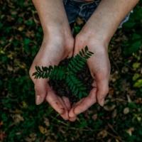 Bio post covid : 4 clés pour répondre aux nouvelles attentes